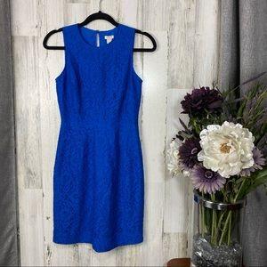 J Crew Sleeveless Lace Sheath Dress EUC - 0